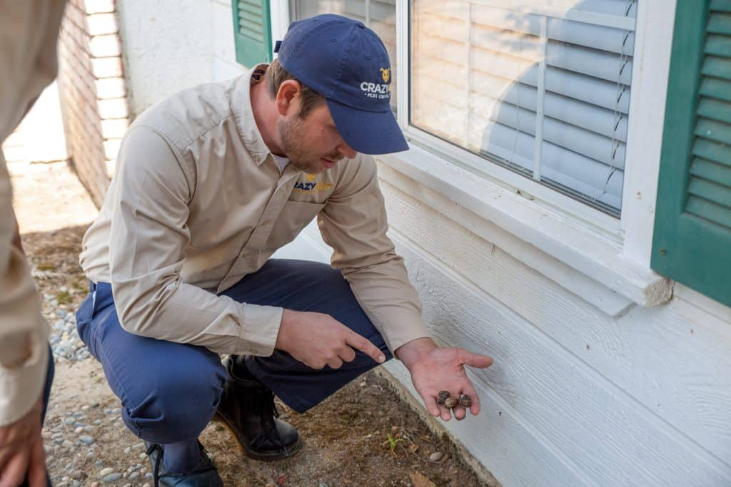 Fresno Pest Control Inspection of Property